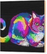 Fluffy Rainbow Cat 2 Wood Print