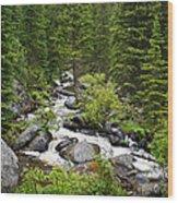 Fluid Motion - Crazy Woman Canyon - Crazy Woman Creek - Johnson County - Wyoming Wood Print