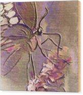 Fluorescent Butterfly Wood Print by Jill Balsam