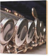 Flute Wood Print