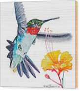 Da177 Flutter By Daniel Adams Wood Print