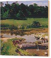 Fluvial Landscape Wood Print