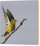 Fly Away Wood Print