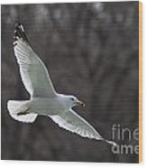 Fly Be Free Wood Print