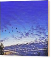 Fly By At Sunset Wood Print