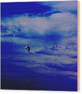 Fly By Night Wood Print