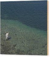 Fly Fishing In Alpine Lake Wood Print
