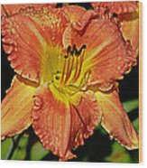 Fly On The Daylily Wood Print