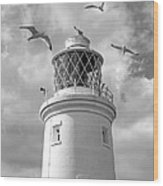 Fly Past - Seagulls Round Southwold Lighthouse In Black And White Wood Print