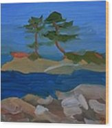 Fly Point Island Wood Print