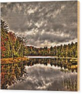 Fly Pond Marsh II Wood Print