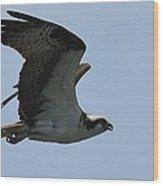 Fly So High Wood Print