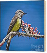 Flycatcher Wood Print