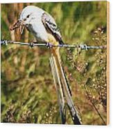 Flycatcher With A Meal Wood Print