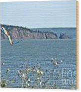 Flying A Kite On The East Coast Wood Print