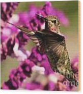 Flying At Attention Wood Print