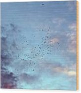 Flying Birds At Sunset Wood Print