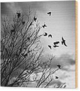 Flying Birds Wood Print