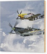 Flying Brothers Wood Print