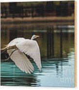 Flying Egret Wood Print by Robert Bales