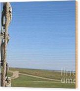 Flying Flag Wood Print