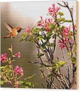 Flying Hummingbird Sipping Nectar Wood Print
