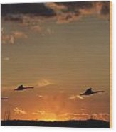Flying Into The Sunset Wood Print