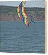 Flying Kite Wood Print