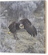 Flying Low Wood Print by Mike  Dawson
