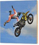 Flying One Wood Print