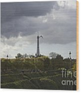 Flying Over The Tuileries Wood Print
