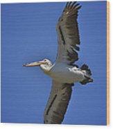 Flying Pelican 3 Wood Print