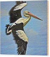 Flying Pelican 4 Wood Print by Heng Tan