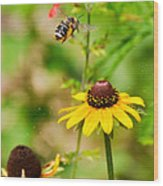 Flying Pollen Wood Print