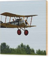 Flying Rc Wood Print by Thomas Young