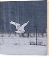 Flying Through Wood Print