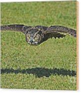 Flying Tiger... Wood Print