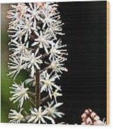 Foam Flower Wood Print