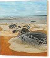 Foam Rocks 01 Wood Print