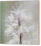 Foamflower Square Wood Print