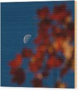 Focused On The Autumn Moon Wood Print