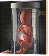 Foetus Grown In A Jar Wood Print