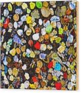 Colorful Gum Wood Print