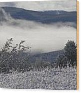 Fog And Frost Wood Print