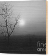 Fog And Tree Wood Print