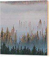 Fog And Trees Wood Print