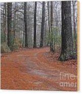 Fog In The Pines Wood Print