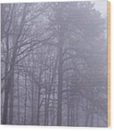 Fog In The Smoky Mountains Wood Print