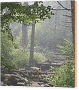 Fog In The Wilderness Wood Print