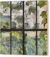 Fog Ivy And Plate Glass Wood Print